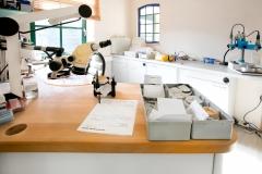 Labor für Gipsanfertigungen